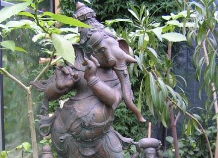Ogród Botaniczny w Powsinie zaprasza na spotkanie z bogami Indii. /materiały prasowe