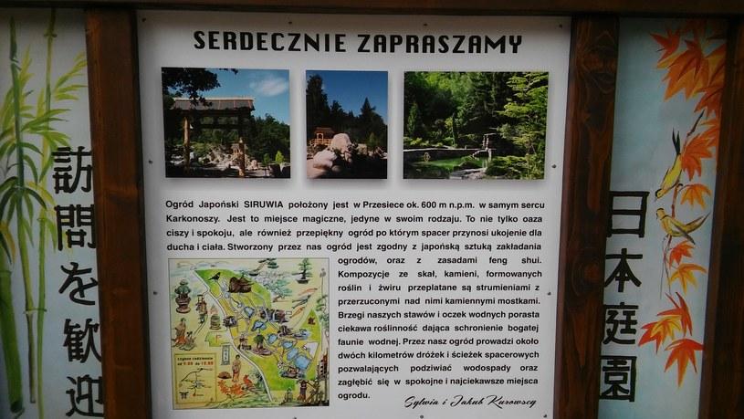 Ogród japoński Siruwia /INTERIA.PL