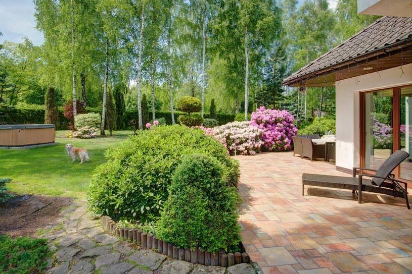 Ogród może stać się przytulnym i kreatywnym miejscem spotkań rodzinnych /123RF/PICSEL