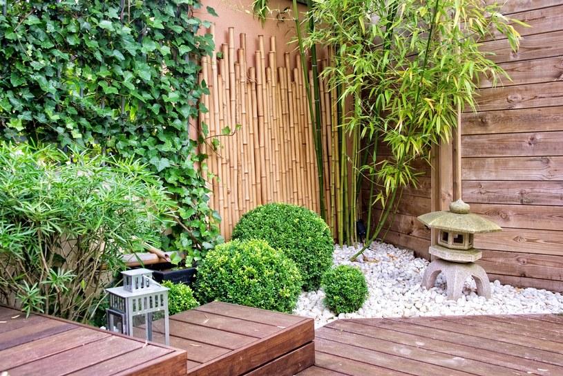 Ogród w japońskim stylu /123RF/PICSEL