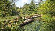 Ogrody i parki Vancouver