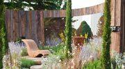 Ogrody - najpiękniejsze aranżacje