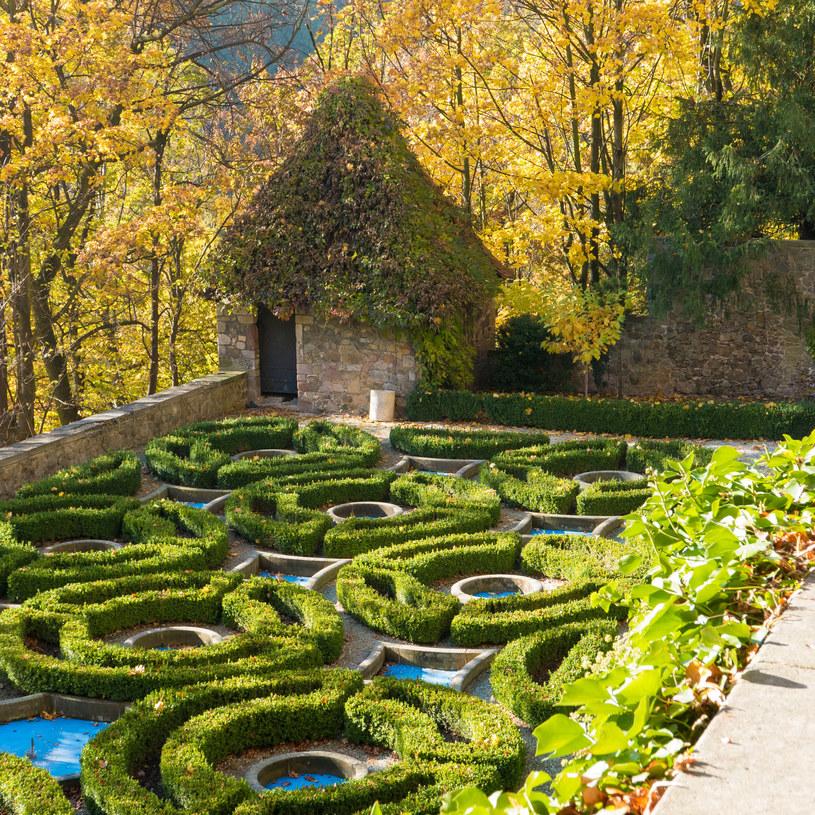 Ogrody wokół zamku Książ w Wałbrzychu /123RF/PICSEL