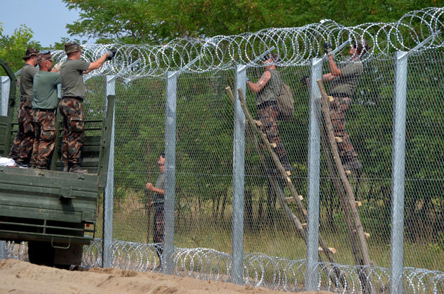 Ogrodzenie na granicy Węgier fot. CSABA SEGESVARI /AFP