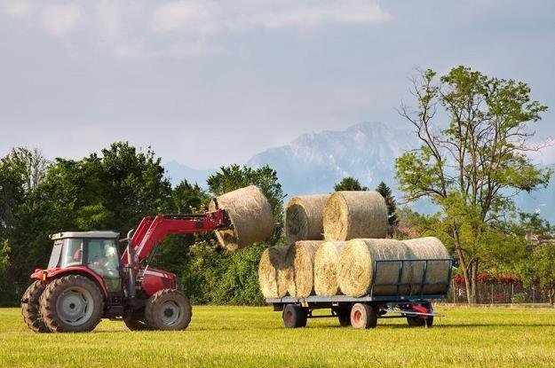 Ogromna przepaść w poziomie dochodów dzieli rolników z Polski i krajów starej Unii Europejskiej /©123RF/PICSEL