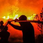 Ogromne pożary lasów w Portugalii. Setki ludzi ewakuowano