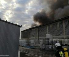 Ogromny pożar hali pod Pszczyną. Strażacy walczą z ogniem