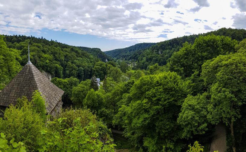Ojcowski Park Narodowy jest najmniejszym polskim parkiem narodowym. Jego symbolem jest nietoperz /123RF/PICSEL
