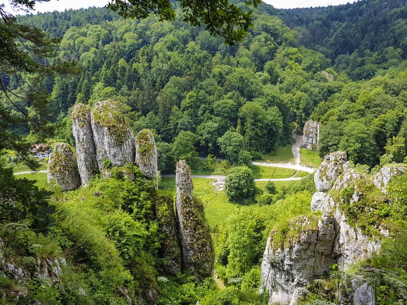 Ojcowski Park Narodowy jest znany z charakterystycznych strzelistych skał /123RF/PICSEL