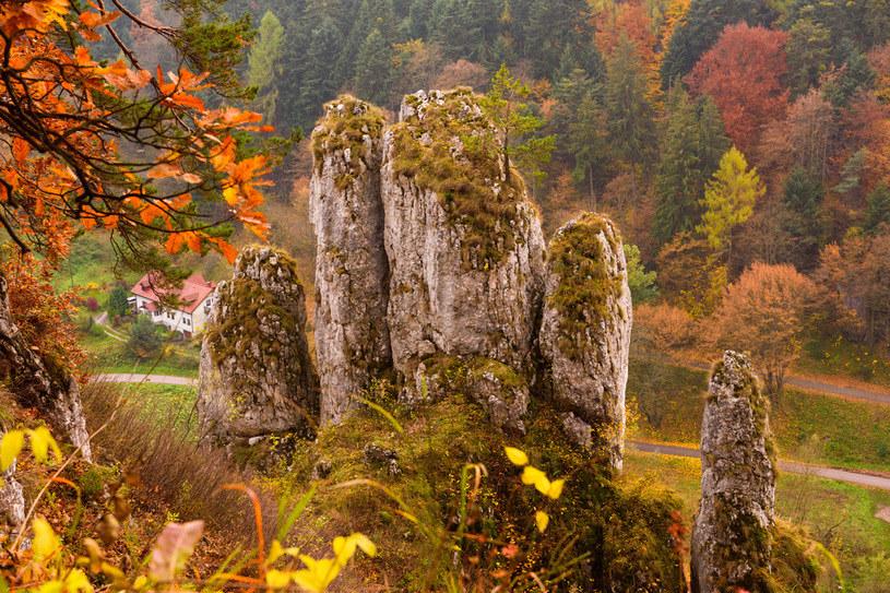 Ojcowski Park Narodowy szczególnie piękny jest jesienią /Picsel /123RF/PICSEL