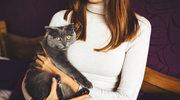 """""""Okład z kota"""" może leczyć?"""