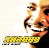 """Okładka albumu """"Hotshot"""" /"""