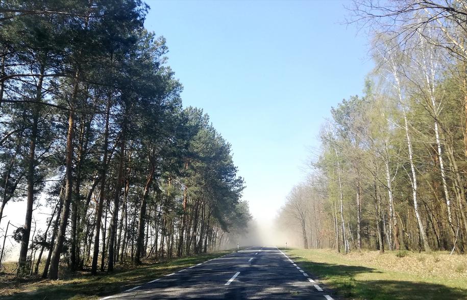 Okolice Parczewa w województwie lubelskim /Gorąca Linia RMF FM