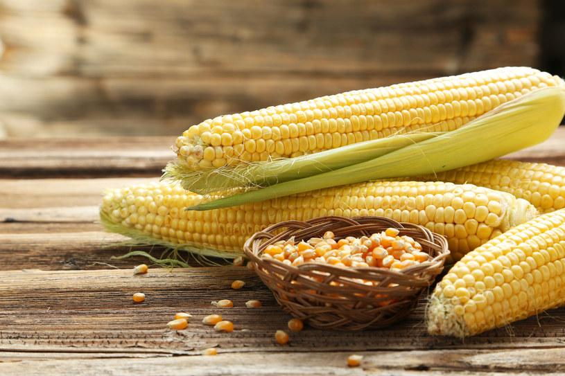Około 50 proc. dziennego posiłku powinny stanowić pełne i nieoczyszczone ziarna zbóż (kukurydza, ryż, żyto) /123RF/PICSEL