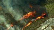 Olbrzymie pożary w USA. Najgorzej jest w Kalifornii