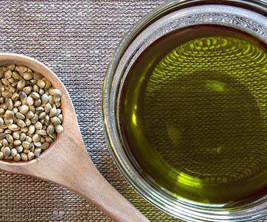 Olej konopny, jego zastosowanie i właściwości lecznicze