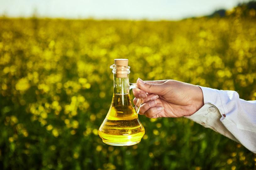 Olej rzepakowy ma doskonałą proporcję kwasów omega-6 do omega-3 /123RF/PICSEL