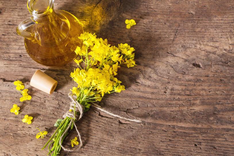 Olej rzepakowy obniża poziom cholesterolu /123RF/PICSEL