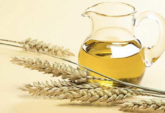 olej z kiełków pszenicy /© Photogenica