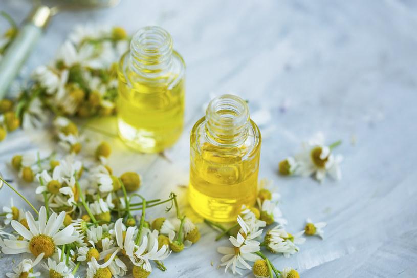 Olej z rumianku można wykorzystać do masażu /123RF/PICSEL