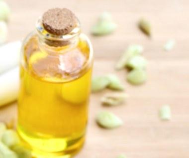 Olej z trawy cytrynowej i jego wszechstronne zastosowania