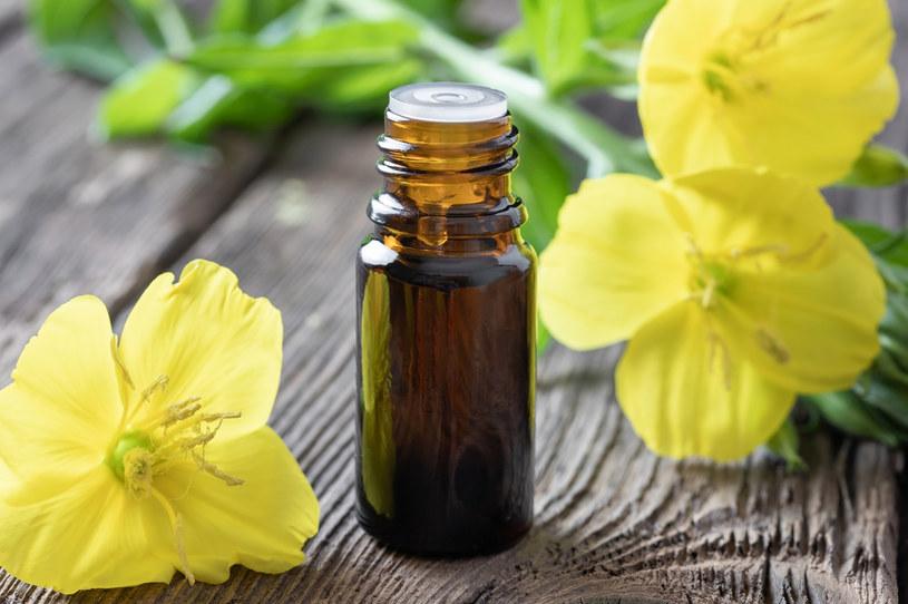 Olej z wiesiołka ma bardzo szerokie zastosowanie. Trzeba jednak wiedzieć, że jego obecna popularność nie oznacza wcale, że produkt ten jest nowością na rynku /123RF/PICSEL