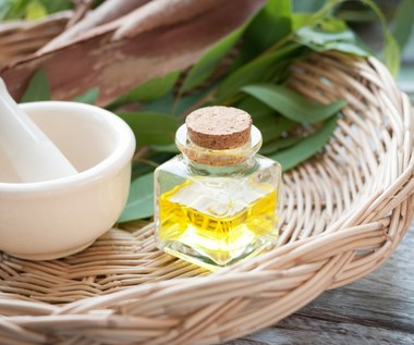 Olejek eukaliptusowy na przeziębienie oraz bóle stawów i mięśni