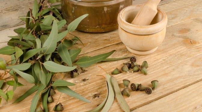 olejek eukaliptusowy na zatkany nos /© Photogenica