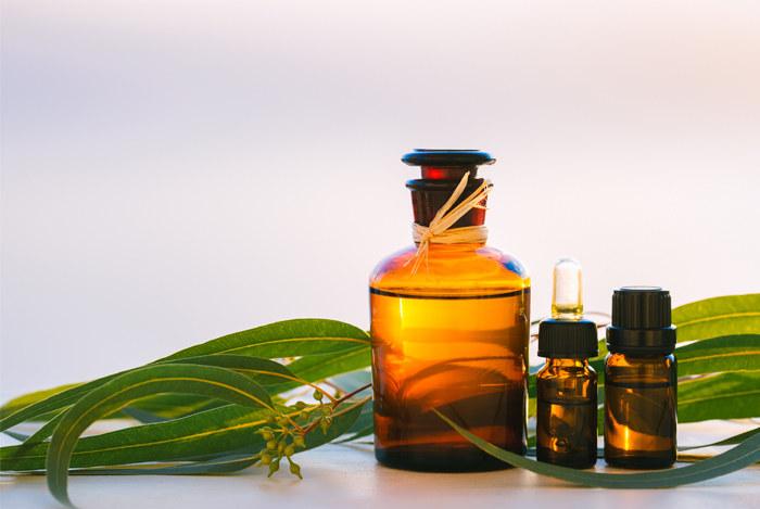 olejek eukaliptusowy /© Photogenica