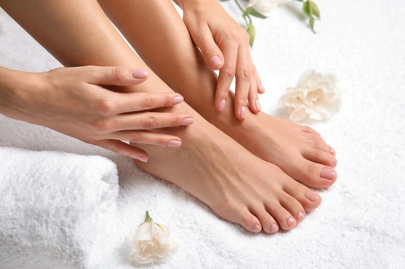 Olejek herbaciany jest w stanie przyspieszać gojenie ran oraz pielęgnować popękane stopy /123RF/PICSEL