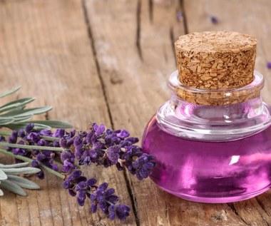 Olejek lawendowy wspomaga leczenie ciężkich infekcji