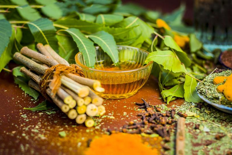 Olejek neem świetnie wpływa na skórę /©123RF/PICSEL