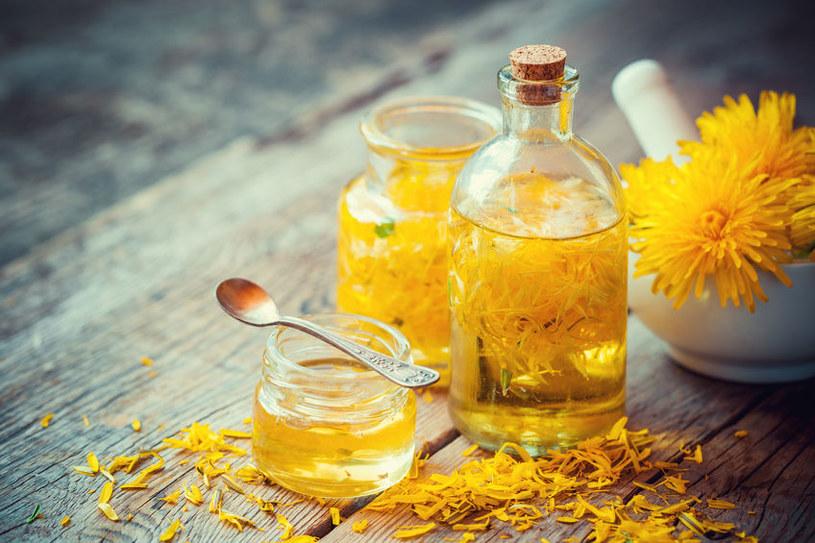 Olejek z mniszka lekarskiego ma zbawienny wpływ na zdrowie /123RF/PICSEL