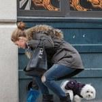 Olivia Palermo sprząta po swoim psie!