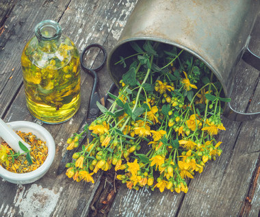 Oliwa świętojańska: Właściwości i zastosowania lecznicze