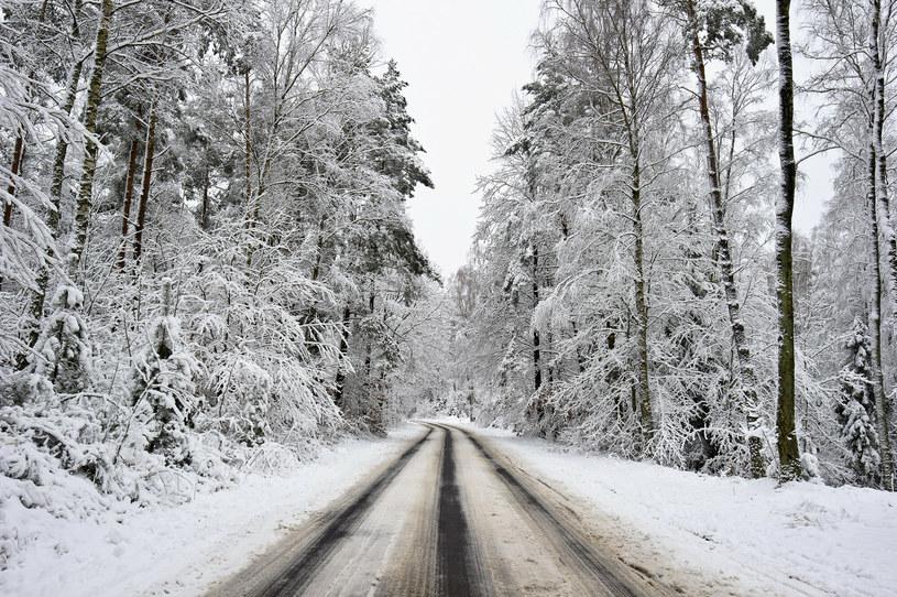 Opady śniegu na Kaszubach; zdj. ilustracyjne /Stanislaw Bielski /Reporter