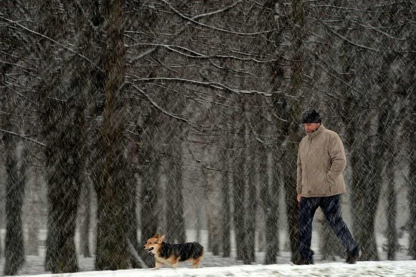 Opady śniegu /AFP