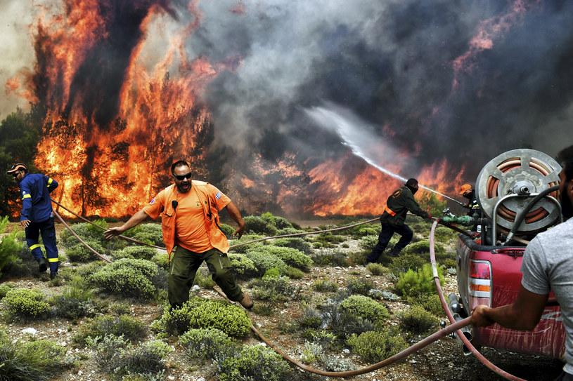 Opanowano już prawie wszystkie pożary, które szalały głównie w Attyce w pobliżu Aten, ale też w Koryncie i na Krecie /VALERIE GACHE /AFP
