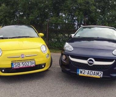 Opel Adam czy Fiat 500? Ankieta i zdjęcia. Wybieraj!