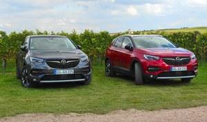 Opel Grandland X: modelowy atak w segmencie