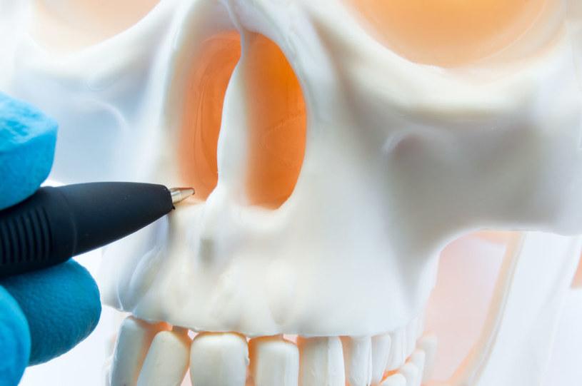 Operacja przegrody nosa /©123RF/PICSEL