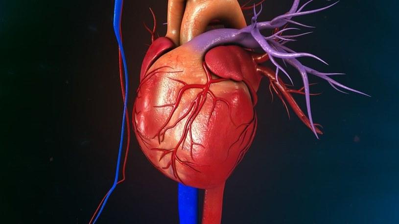 Operacja raczej wymaga zatrzymania akcji serca /123RF/PICSEL