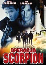 Operacja Scorpion