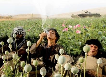 """""""Opiumowa wojna"""" to alegroia współczesnego Afganistanu /materiały dystrybutora"""