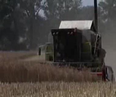 Opłaca się być rolnikiem