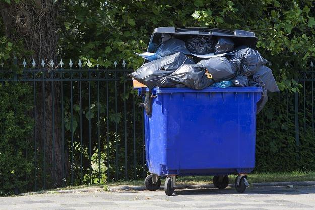 Opole nie wyklucza radykalnej podwyżki cen za odpady /©123RF/PICSEL
