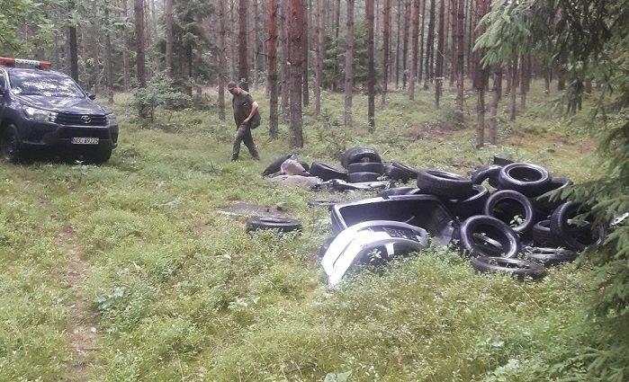 Opony wyrzucone w lesie w podolsztyńskim Nadleśnictwie Kudypy /Nadleśnictwo Kudypy /materiały prasowe