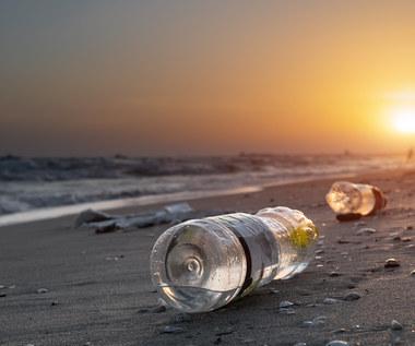 """Opóźnienia w implementacji """"dyrektywy plastikowej"""" będą miały konsekwencje"""
