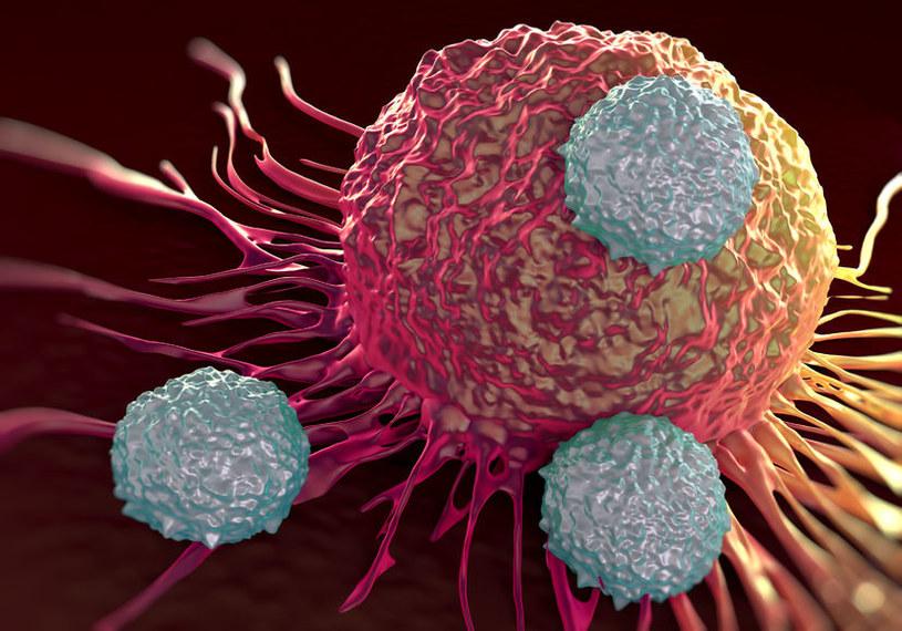 Opracowano innowacyjną metodę walki z nowotworami /123RF/PICSEL