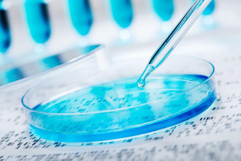 Opracowano nową metodę sekwencjonowania genów /123RF/PICSEL